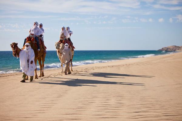 adventure-camels(1)
