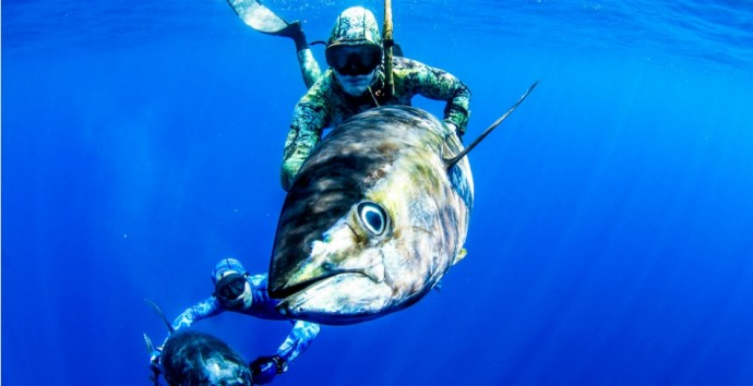 Spearfishing-cancun-690x354
