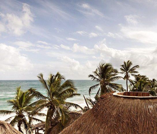 papaya-playa-project-architecture-roof-k-01-x2