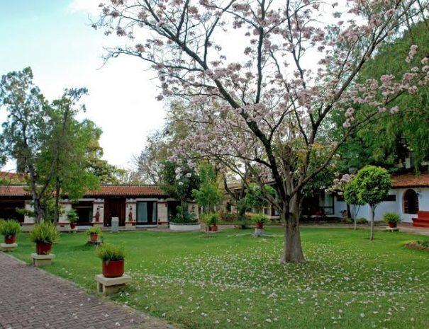 Hotel-Mision-De-Los-Angeles-Oaxaca-Mexico-Garden